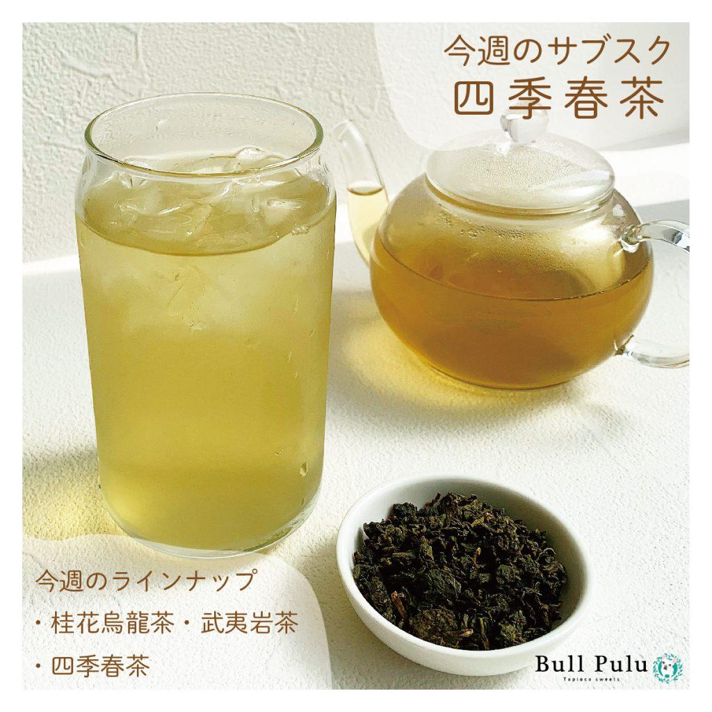 【サブスク×四季春茶】